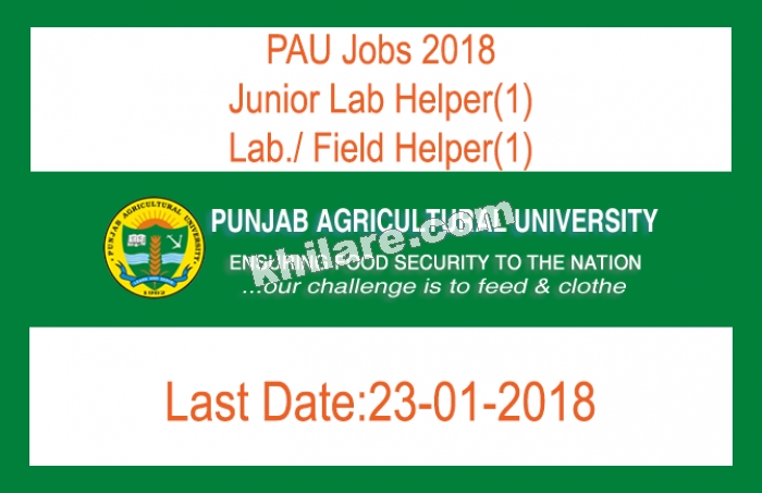 PAU Jobs 2018 -Post of Junior Lab Helper(1), Lab./ Field Helper(1) [Last Date 23-01-2018]